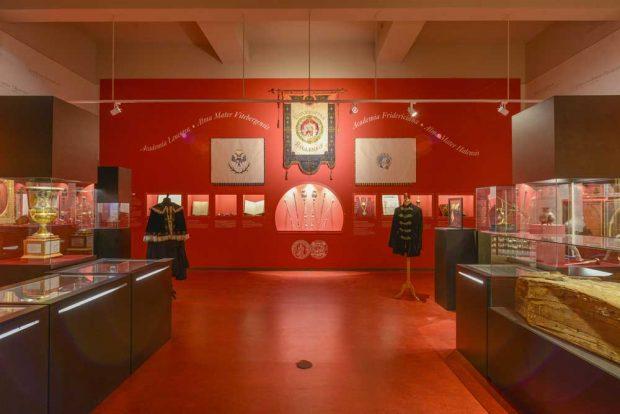 Blick in das Universitätsmuseum der LMU Halle. Foto: Uni Halle / Markus Scholz