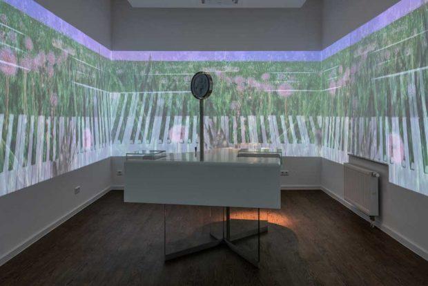 Interaktive Ausstellung im Schumann-Haus. Foto: Christian Kern