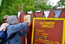 Eine Gemeinschaftsgärtnerin der Ökolöwen befestigt die Plakette zur Auszeichnung als offizielles Projekt der UN-Dekade Biologische Vielfalt an der Gartentür des Stadtgarten Connewitz. Foto: Ökolöwe