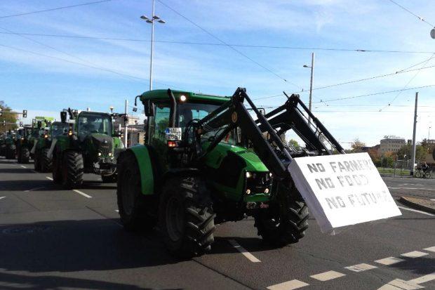 Nach Jahren der Billigproduktion sind die Bauern offenbar überfordert. Foto: Martin Schöler