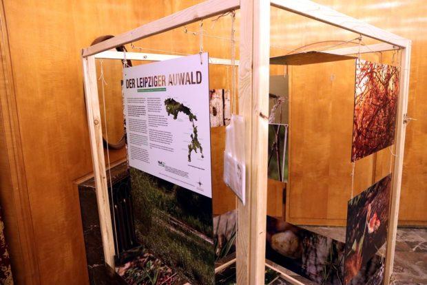 Der Auwald-Kubus wird zukünftig an verscheidenen Stellen Leipzigs auftauchen, um den Auwald vorzustellen. Foto: L-IZ.de
