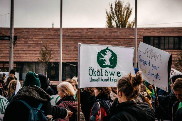 Gemeinsam mit NABU, der Fridays for Future-Bewegung war auch der Ökolöwe vertreten. Foto: Tobias Möritz
