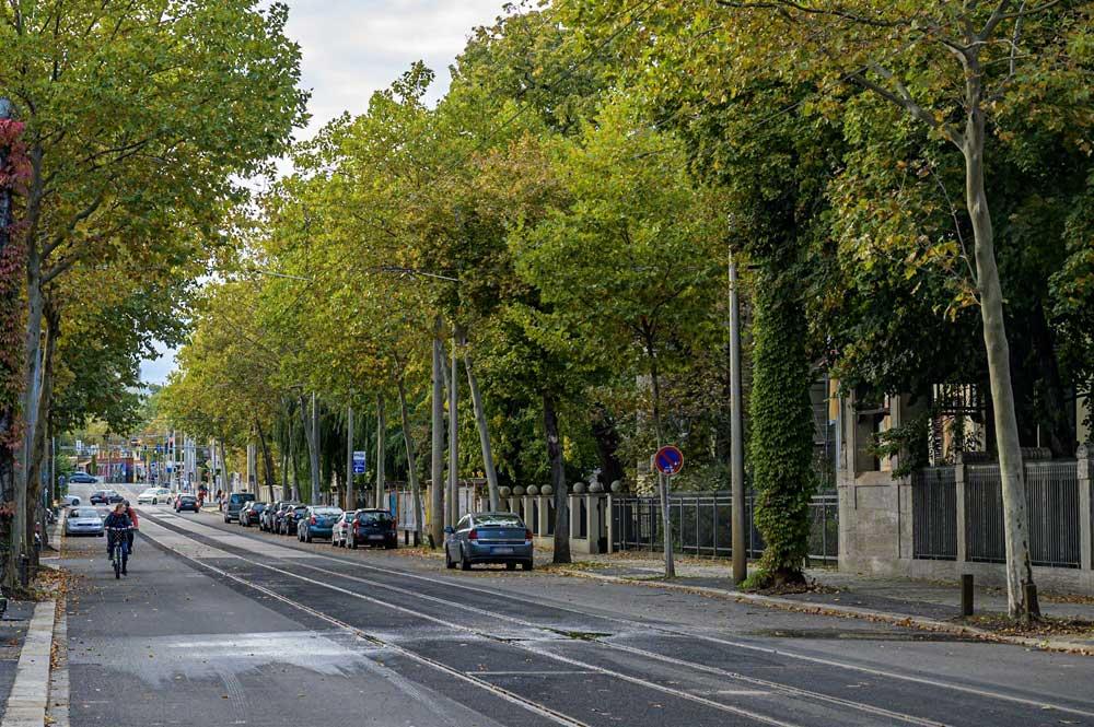 Die sanierte Karl-Heine-Straße. Foto: Stadt Leipzig/ Henning Croissant