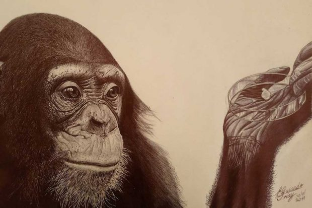 Zeichnung eines Schimpansen von Enrique Guisado Triay, einem kubanischen Künstler, der aktuell in Leipzig lebt und wirkt. Foto: Enrique Guisado Triay