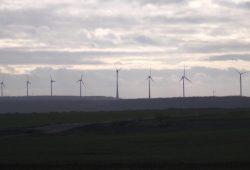 Windpark im Leipziger Südraum. Foto: Michael Freitag