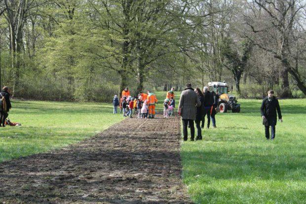Anlage des ersten Blühstreifens im April 2019 im Clara-Zetkin-Park. Foto: Ralf Julke