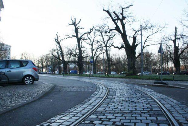Die Feuerbachschleife in der Kurve in die Max-Planck-Straße. Foto: Ralf Julke