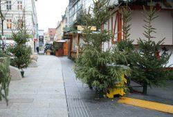 Blindenleitstreifen in der Grimmaischen Straße. Archivfoto: Ralf Julke