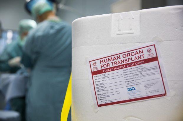 In solchen Behältern werden Organe für Transplantationen befördert. Foto: Stefan Straube/UKL