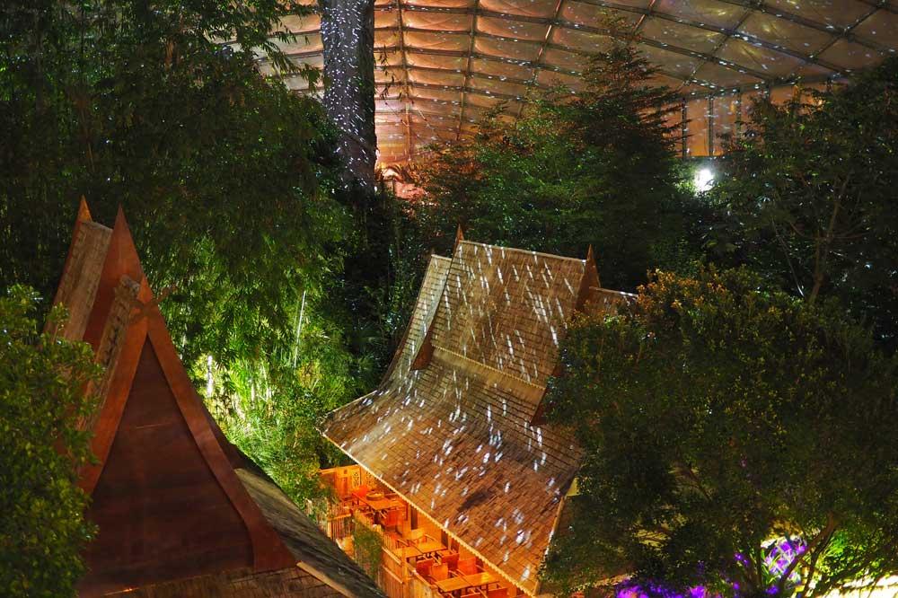 Magisches Tropenleuchten im Gondwanaland. Foto: Zoo Leipzig