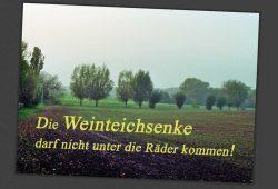 Die Weinteichsenke darf nicht unter die Räder kommen. Kartenmotiv: Bürgerinitiative Markkleeberg Ost