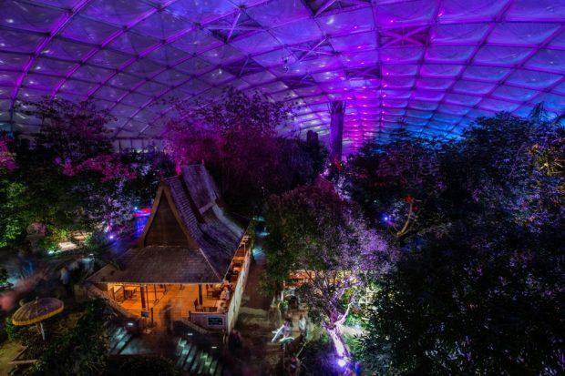 08_Szenische Lichtspiele beim Magischen Tropenleuchten © Zoo Leipzig