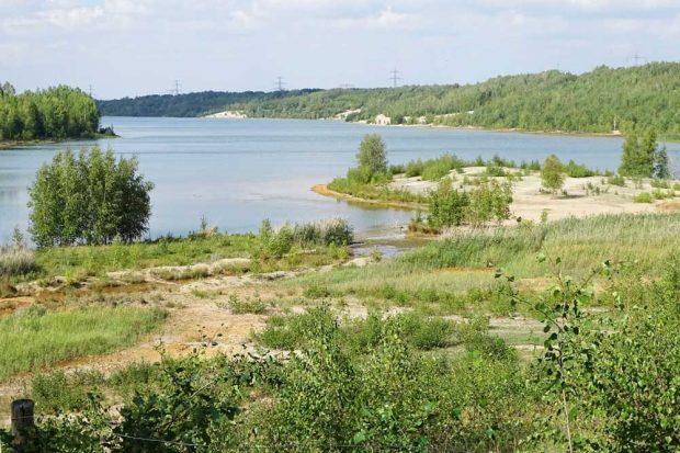 Das Gebiet am Bockwitzer See ist als Naturschutzgebiet, europäisches Fauna-Flora-Habitat-Gebiet und Europäisches Vogelschutzgebiet ausgewiesen. Foto: NABU Südraum Leipzig