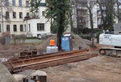 Der letzte Baum auf dem Grundstück: knapp an der Kante der künftigen Tiefgarage. Foto: Frank Wernstedt