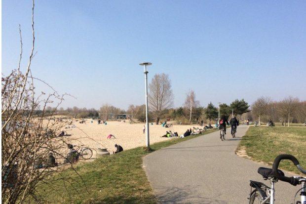 Alle schön verteilt am Cospudener See. Foto: L-IZ.de