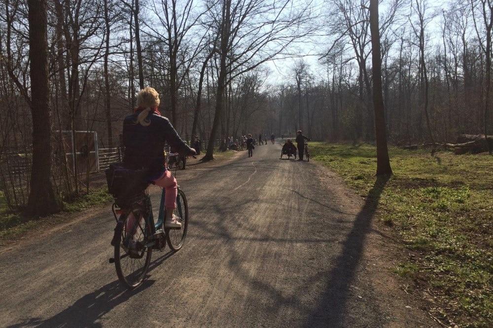 Immer mehr Leipziger nutzen das Fahrrad. Foto: LZ