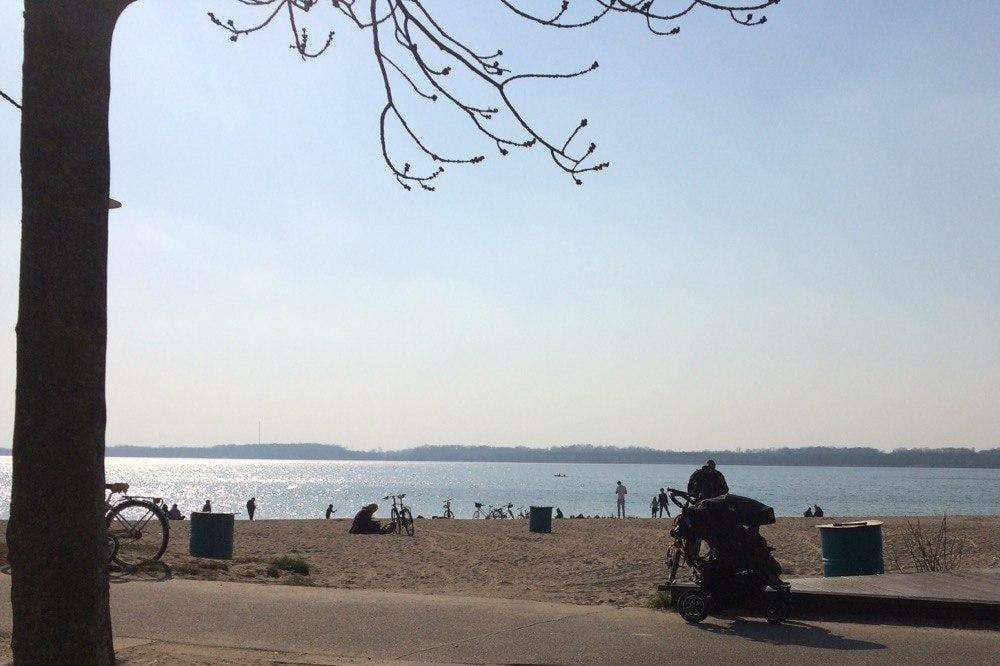 Lieber Abstand halten -auch am Cospudener See. Foto: L-IZ.de