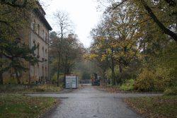 Blick ins Gelände des ehemaligen Parkklinikums Dösen. Foto: L-IZ