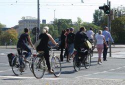 Radfahrer-/Fußgängerampel am Martin-Luther-Ring. Foto: Ralf Julke