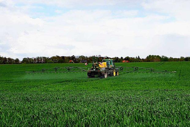 Die aktuelle GAP führt zur Intensivierung der Landwirtschaft. Foto: Sebastian Tilch