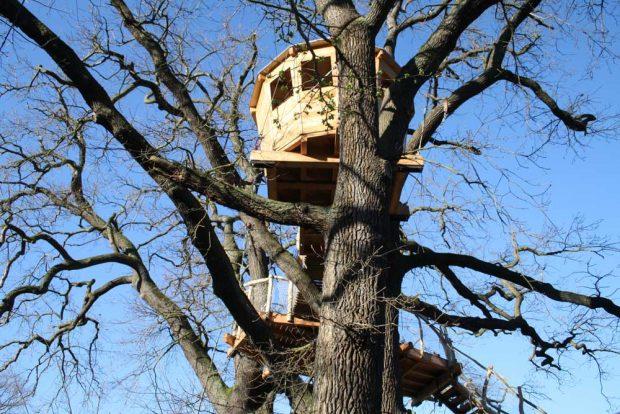 Die Baumplattform der Auwaldstation. Foto: Ralf Julke