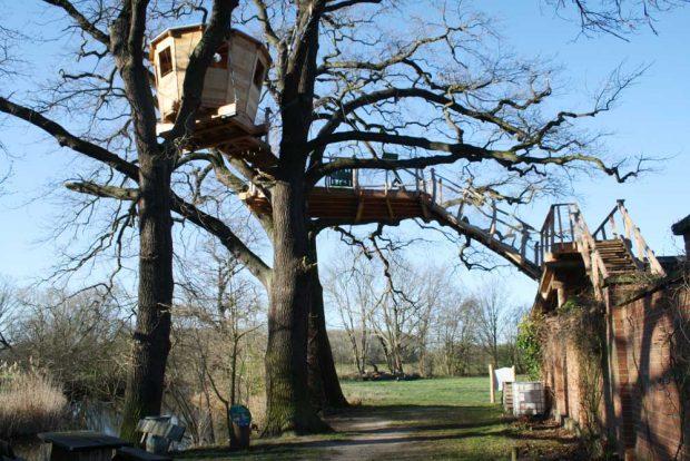 So geht's hinauf auf die Baumplattform an der Auwaldstation. Foto: Ralf Julke