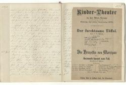 Auszug aus dem Tagebuch von Eveline von Hoffmann für ihre Tochter Martina aus dem Jahr 1876. Quelle: Stadtarchiv Leipzig