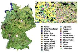 Deutschlandkarte Landbedeckung. Der Algorithmus identifiziert 19 verschiedene Feldfruchtarten mit einer Genauigkeit von 88 Prozent. © UFZ