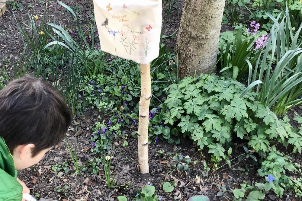 Eine Baumscheibe wird bepflanzt. Foto: Ökolöwe