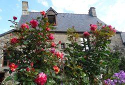 In ihrem Ferienhaus würde Laurence jetzt eigentlich Gäste empfangen. © privat