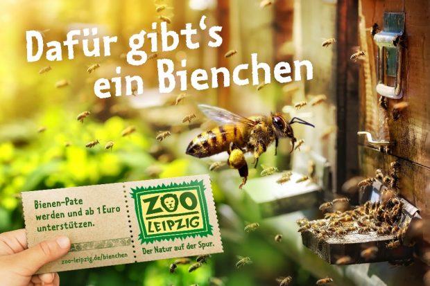 Mit einer Bienen-Patenschaft den Zoo unterstützen © Zoo Leipzig