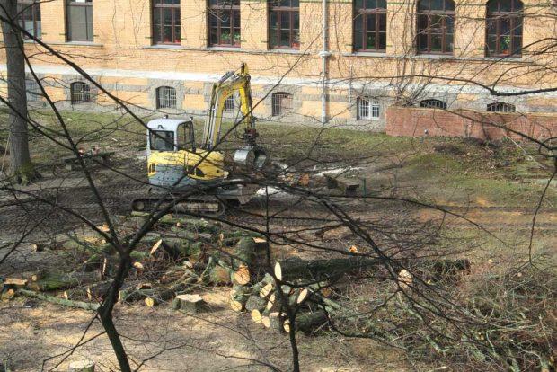 Der Schulhof der Apollonia-von-Wiedebach-Schule am 28. Februar. Foto: Ralf Julke