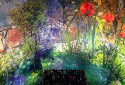 Mal aus der (Garten-)Vogelperspektive: Carolas Garten. Foto: Tom Schulze