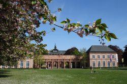 Das Grassi-Museum in Leipzig. Foto: L-IZ.de