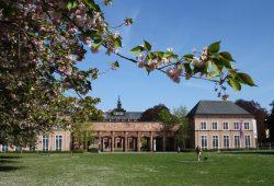 Das Grassi-Museum und andere sächsische Museen sollen in der nächsten Woche wieder öffnen dürfen. Foto: L-IZ.de
