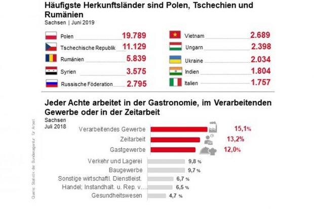 Woher ausländische Arbeitnehmer in Sachsen kommen und wo sie arbeiten. Grafik: Arbeitsagentur Sachsen