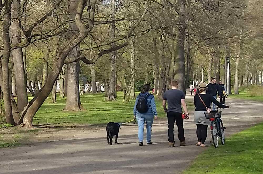 Nur mit Leine: Mit Wuff im Park. Foto: Marko Hofmann