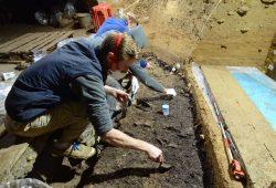 Ausgrabungsarbeiten in der IUP-Schicht I in der Bacho-Kiro-Höhle. Aus dieser Schicht wurden vier Homo sapiens-Knochen sowie zahlreiche Steinwerkzeuge, Tierknochen, Knochenwerkzeuge und Anhänger geborgen. Foto: Tsenka Tsanova, Lizenz: CC-BY-SA 2.0