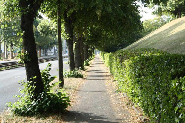 Der viel zu schmale Fuß(Rad)weg am Völkerschlachtdenkmal. Foto: Ralf Julke