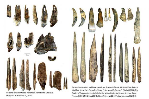 Persönliche Schmuckgegenstände und Knochenwerkzeuge aus der Bacho-Kiro-Höhle in Bulgarien (links) und aus der Grotte du Renne in Frankreich (rechts). Die Artefakte aus der Bacho-Kiro-Höhle werden dem Homo sapiens zugeschrieben und auf ein Alter von etwa 45.000 Jahre datiert. Die Artefakte aus der Grotte du Renne werden den Neandertalern zugeschrieben und sind nicht ganz so alt. Foto: Rosen Spasov and Geoff Smith, Lizenz: CC-BY-SA 2.0
