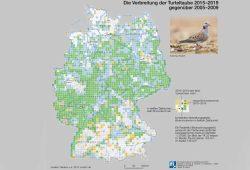 Nachweis von Turteltauben. Karte: Nationalatlas / IfL