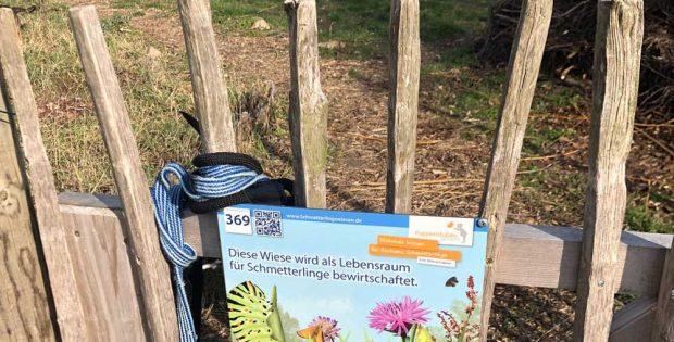 Gemeinschaftsgarten Dreiskau-Muckern, Schmetterlingswiese Nr. 369. Foto: Stephan Schürer