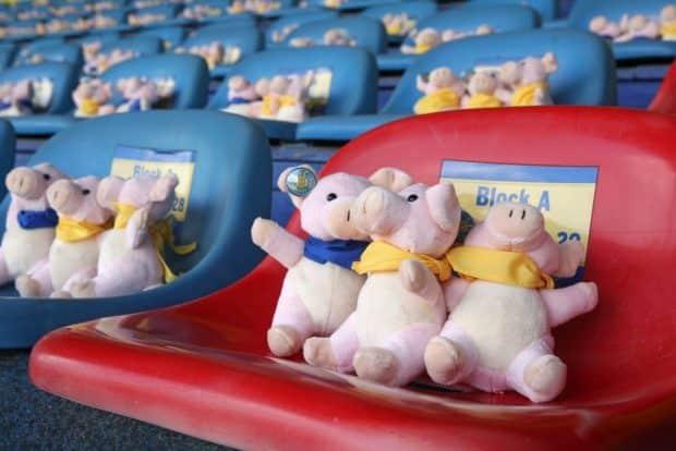 Die Tribüne war gut gefüllt - mit Lok-Glücksschweinchen. Foto: Jan Kaefer