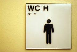 Alles okay im WC? Foto: Ralf Julke