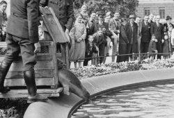 Robben im Mendebrunnen, aufgenommen vom Fotografen Max Ellrich. Auch zu dem Motiv fehlen dem Stadtarchiv Hinweise, etwa zur Datierung des Fotos. Quelle: Stadtarchiv Leipzig