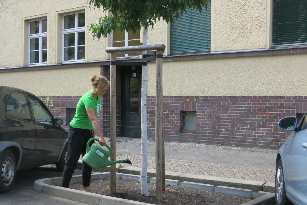 Mach mit beim Leipziger Gießsommer © Ökolöwe