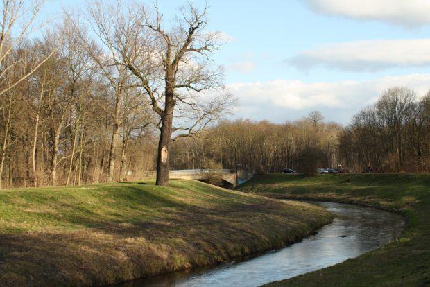 Nahlebogen kurz vor der Brücke der Gustav-Esche-Straße. Foto: Ralf Julke