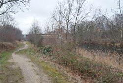 Weg am Elster-Saale-Kanal. Foto: Marko Hofmann