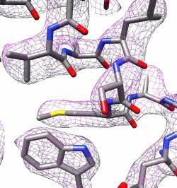 Teil der 3D-Struktur von Apoferritin Foto: Panagiotis Kastritis
