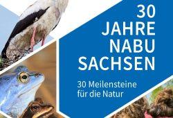 Ausschnitt der Jubiläumsbroschüre. Quelle: NABU Landesverband Sachsen e.V.